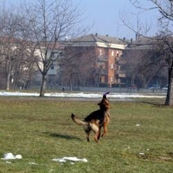 Parco di Montecucco - Piacenza