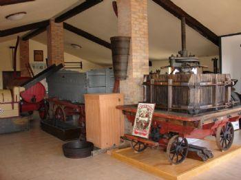 """Museo della Vite e del Vino """"Fernando Pizzamiglio"""""""