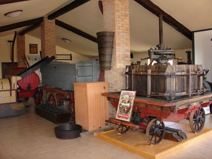 Museo della Vite e del Vino Ferruccio Pizzamiglio