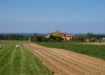 Agriturismo Le Rondini